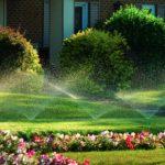 Warum brauchen Sie automatisierte Bewässerungssysteme?